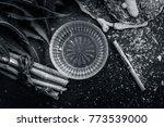close up of indian iliac's... | Shutterstock . vector #773539000