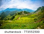 Stock photo beautiful scenery of the rice fields at cat cat village 773552500