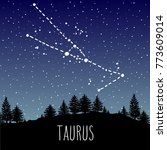 taurus   hand drawn zodiac sign ... | Shutterstock .eps vector #773609014