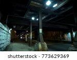 dark chicago city alley... | Shutterstock . vector #773629369