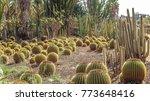 Cactus Garden  Yarkon Park  Tel ...