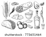mexican cuisines drawing.... | Shutterstock .eps vector #773651464