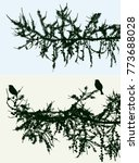 silhouettes of spruce branches...   Shutterstock .eps vector #773688028