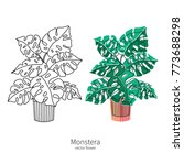 vector monstera icon set. lined ...