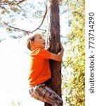 little cute real boy climbing... | Shutterstock . vector #773714290