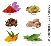 vector classic spices... | Shutterstock .eps vector #773725030