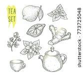 sketch of tea elements include... | Shutterstock .eps vector #773725048