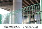 a green wire entanglements. | Shutterstock . vector #773807263
