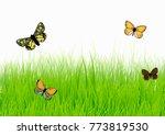 butterflies flying around on...   Shutterstock .eps vector #773819530
