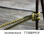 rope knot on wood background.... | Shutterstock . vector #773889919