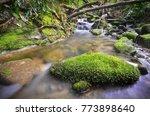 amazing water stream and... | Shutterstock . vector #773898640