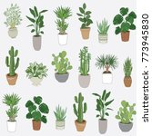 set of house indoor plant... | Shutterstock .eps vector #773945830