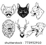 vector collection of hand drawn ... | Shutterstock .eps vector #773952910