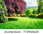 spring park. city park with... | Shutterstock . vector #773960620