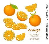 orange vector set | Shutterstock .eps vector #773968750