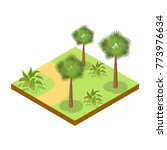 park alley with bushes and palm ...   Shutterstock .eps vector #773976634