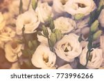 white beautiful eustoma flowers ... | Shutterstock . vector #773996266