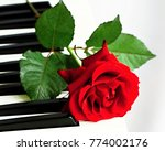 piano with rose on a valentine... | Shutterstock . vector #774002176