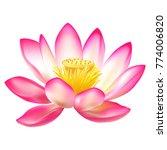 Lotus. Water Lily. Spring...
