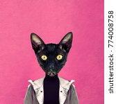 contemporary art collage. fun... | Shutterstock . vector #774008758