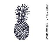 hand drawn pineapple fruit... | Shutterstock .eps vector #774126850