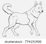 outline picture of siberian... | Shutterstock .eps vector #774151900