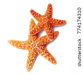 two starfish on white background | Shutterstock . vector #774174310