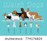 welsh dogs size comparison set... | Shutterstock .eps vector #774176824