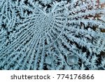 Icy Frost On Spiders Web