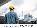 asian engineer manager  field... | Shutterstock . vector #774239650
