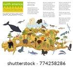 isometric 3d north america... | Shutterstock .eps vector #774258286