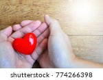 heart on hand for concept... | Shutterstock . vector #774266398