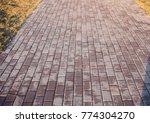 perspective view of monotone... | Shutterstock . vector #774304270