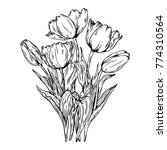 bouquet of tulips flowers... | Shutterstock .eps vector #774310564