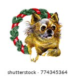 dog wishing happy new year with ... | Shutterstock . vector #774345364