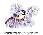 watercolor bird sitting on...   Shutterstock . vector #774345394