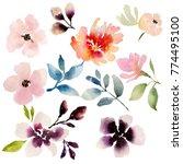 watercolour flower set  | Shutterstock . vector #774495100