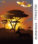 colorful sunset scene  african... | Shutterstock .eps vector #774515734