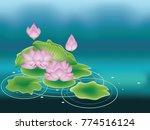 blooming pink lotus flowers... | Shutterstock .eps vector #774516124