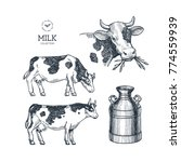 milk farm collection. cow... | Shutterstock .eps vector #774559939