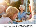 group of senior friends...   Shutterstock . vector #774641713