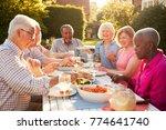 group of senior friends... | Shutterstock . vector #774641740