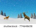 arctic landscape scene  snow...   Shutterstock . vector #774648658