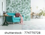 blue couch with pink pillow and ... | Shutterstock . vector #774770728
