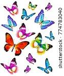 beautiful color butterflies set ...   Shutterstock . vector #774783040