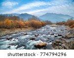 a river stream passing near... | Shutterstock . vector #774794296