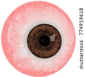 realistic human eye with  brown ...   Shutterstock .eps vector #774919618
