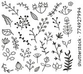 Doodle Hand Drawn Line Cute Floral Icons Flowers Laurel Wreath Leaf Design Element Collection Isolated Vector illustration