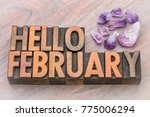 hello february in vintage... | Shutterstock . vector #775006294