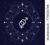 vector illustration of zodiac... | Shutterstock .eps vector #775026748